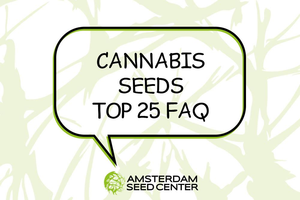 25 Frequently Asked Questions + Answer about Cannabis Seeds