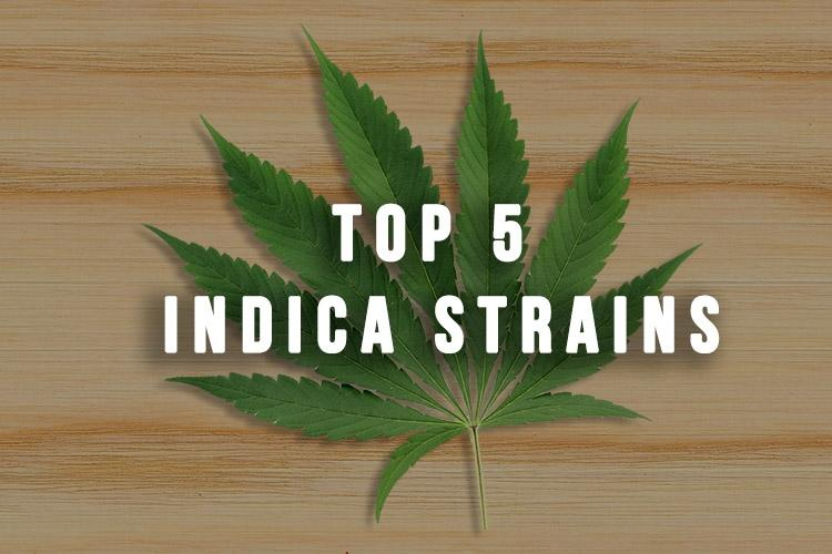 Top 5 Indica Strains