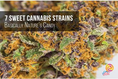 7 Sweet Cannabis Strains Your Dentist Recommends To Avoid