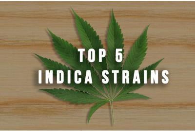 Top 5 Indica Strains
