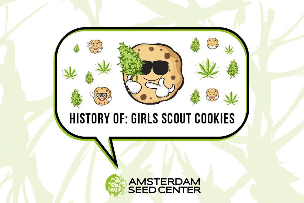 A Short History of the Girl Scout Cookies strain and our Top 5 Cookies strains