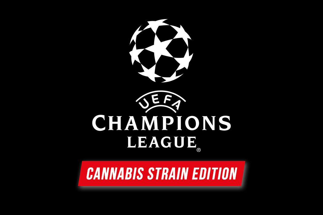 SPECIAL: Champions League of Cannabis Strains ⚽