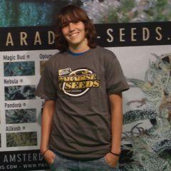 Paradise Seeds men's T-shirt with golden logo