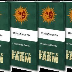 Runtz Muffin - 5-pack
